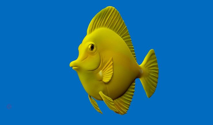 allyalbon_534_zbrush_yellow_tang